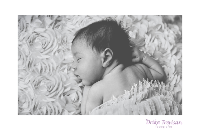 newborn_photography_camilli_sp10
