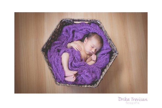 newborn_photography_camilli_sp11